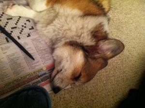 Crosswords are exhausting