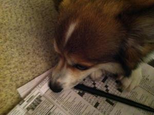 I love crossword puzzles